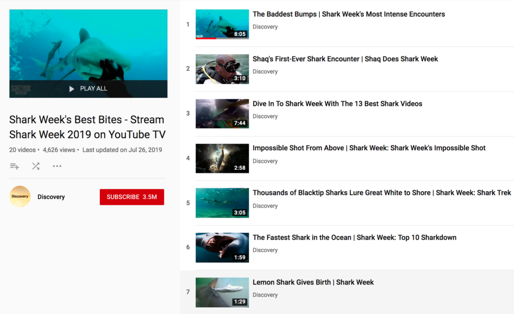 Hungry For More Shark Week? Catch These Top Sharks on YouTube