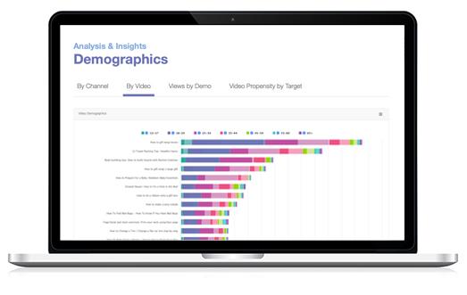 VideoAmigo • Free Tool • Demographics